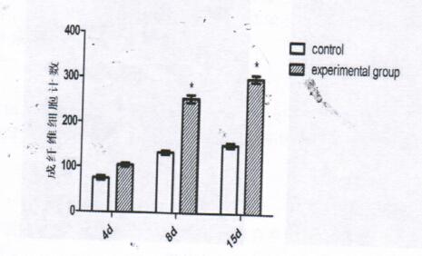 图3:伤后不同时间点,放射性损伤创面应用VEGF/bFGF-PLGA的实验组与对照组的成纤维细胞计数比较