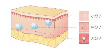 玻尿酸里的交联剂是什么 玻尿酸打多了会有什么影响