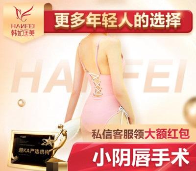 私密整形阴蒂肥大缩小广东韩妃医疗美容医院李光琴优惠手术的封面
