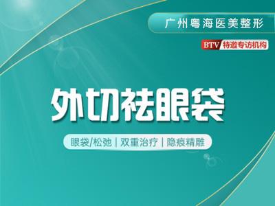 眼部整形祛眼袋广州粤海医院眼科中心殷晓峰优惠手术的封面